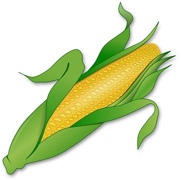corn-155613_960_720