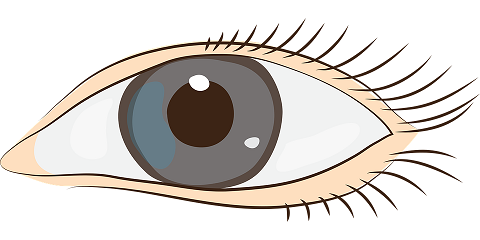 eyes-1540474_960_720
