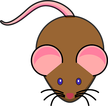 mouse-304966_960_720