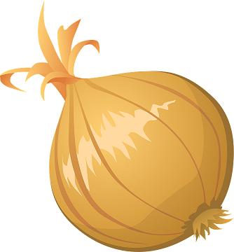 onion-576534_960_720